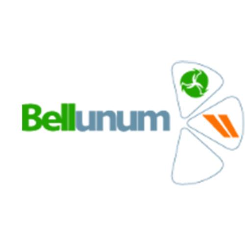 Logo - Bellunum s.r.l.